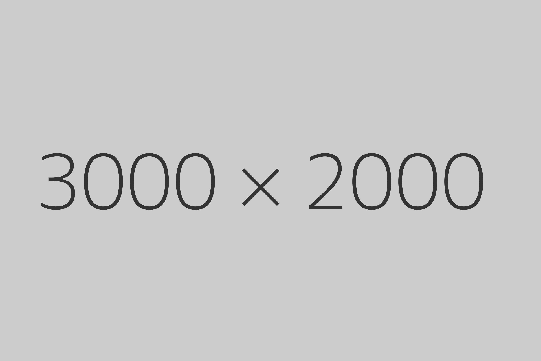 3000 x 2000 example image
